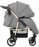 Прогулочная коляска Carrello Echo